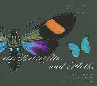 100 Butterflies and Moths: Portraits from the Tropical Forests of Costa Rica - Miller, Jeffrey C, and Janzen, Daniel H, and Hallwachs, Winifred