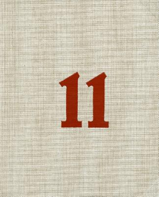 11 Years: A Decade of Contemporary Art - Jorundsdottir, Audur (Editor)