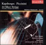 14 Silver Strings