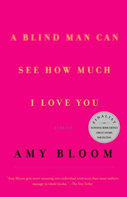 A Blind Man Can See How Much I Love You: Stories - Bloom, Amy