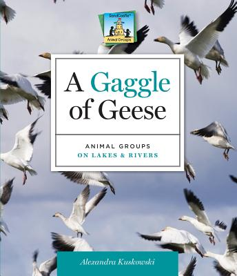 A Gaggle of Geese: Animal Groups on Lakes & Rivers - Kuskowski, Alex