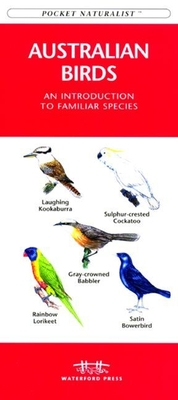 African Animal Tracks: An Introduction to the Tracks & Signs of Familiar Species - Kavanagh, James