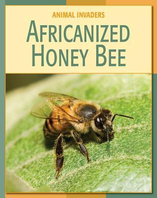 Africanized Honey Bee - Somervill, Barbara A