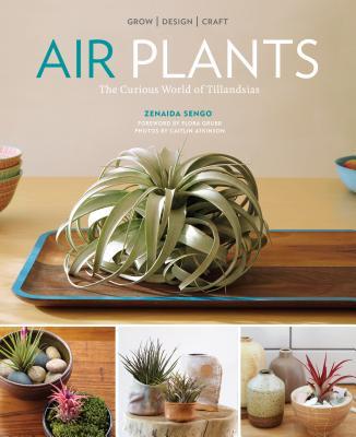 Air Plants: The Curious World of Tillandsias - Sengo, Zenaida
