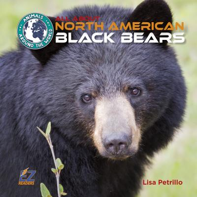 All about North American Black Bears - Petrillo, Lisa