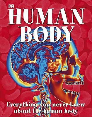 Amazing Human Body -