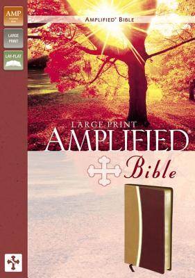 Amplified Bible - Zondervan Publishing