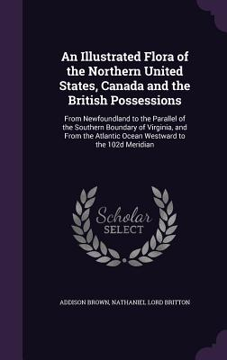 An Illustrated Flora of the Northern United States, Canada and the British Possessions: From Newfoundland to the Parallel of the Southern Boundary of Virginia, and from the Atlantic Ocean Westward to the 102d Meridian - Brown, Addison, and Britton, Nathaniel Lord