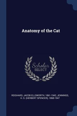 Anatomy of the Cat - Reighard, Jacob Ellsworth, and Jennings, H S 1868-1947