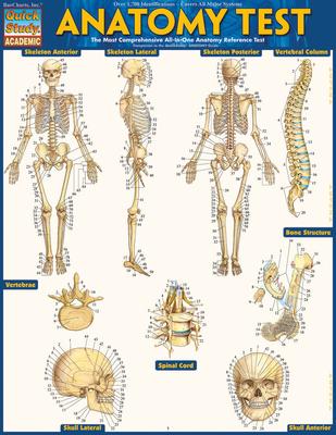 Anatomy Test - BarCharts Inc