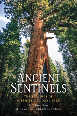 Ancient Sentinels: The Sequoias of Yosemite National Park - Harvey, Thomas, and Kuhn, Bill (Revised by), and Devine, Pete (Revised by)
