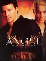 Angel: Season 5 [6 Discs]
