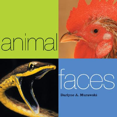 Animal Faces - Murowski, Darlene