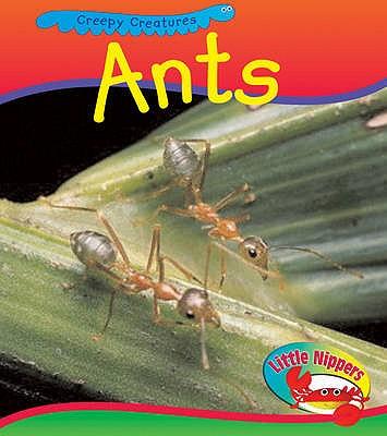 Ant - Barraclough, Sue