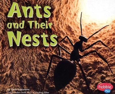 Ants and Their Nests - Tagliaferro, Linda