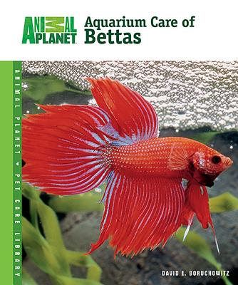 Aquarium Care of Bettas - Boruchowitz, David E