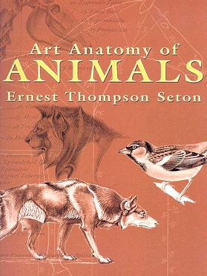 Art Anatomy of Animals - Thompson Seton, Ernest