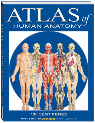 Atlas of Human Anatomy - Perez, Vincent