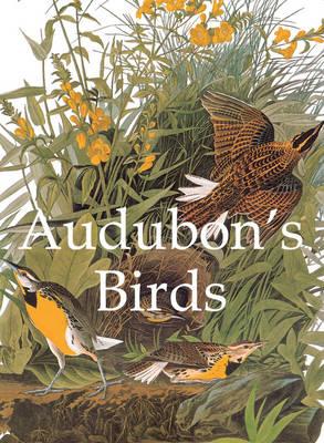 Audubon's Birds - Audubon, John James
