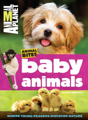 Baby Animals (Animal Planet Animal Bites) - DePrisco, Dorothea
