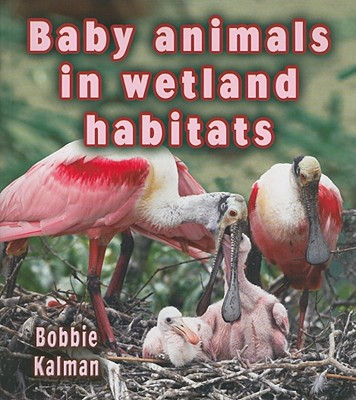 Baby Animals in Wetland Habitats - Kalman, Bobbie