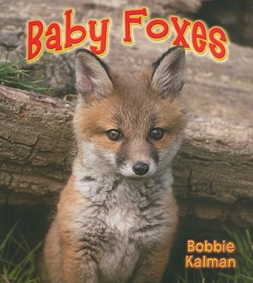 Baby Foxes - Kalman, Bobbie