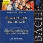 Bach: Cantatas, BWV 10, 12, 13