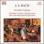 Bach: Favorite Cantatas