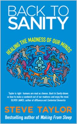 Back to Sanity: Healing the Madness of Our Minds - Taylor, Steve