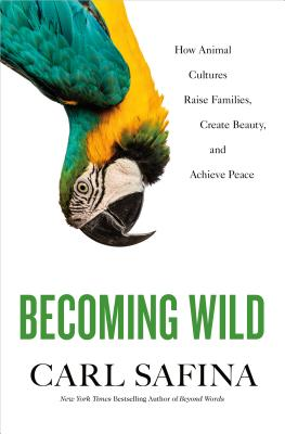 Becoming Wild: How Animal Cultures Raise Families, Create Beauty, and Achieve Peace - Safina, Carl