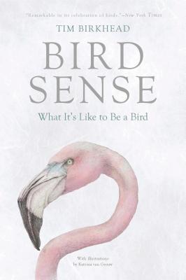 Bird Sense: What It's Like to Be a Bird - Birkhead, Tim