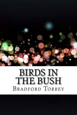 Birds in the Bush - Torrey, Bradford