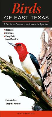 Birds of East Texas: A Guide to Common & Notable Species - Homel, Greg R