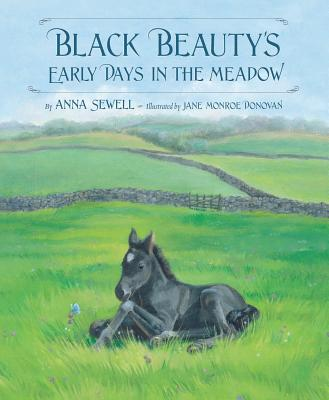 Black Beauty's Early Days in the Meadow - Sewell, Anna