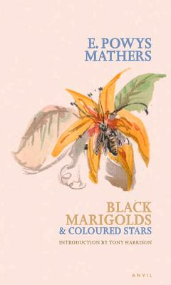Black Marigolds & Coloured Stars - Mathers, E Powys