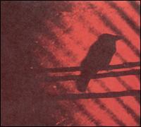 Born into Trouble as the Sparks Fly Upward - The Silver Mt. Zion Memorial Orchestra & Tra-La-La Band