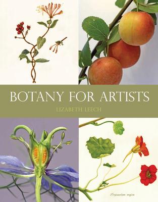Botany for Artists - Leech, Lizabeth