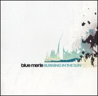 Burning in the Sun - Blue Merle