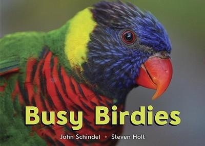 Busy Birdies - Schindel, John, and Holt, Steven (Photographer)