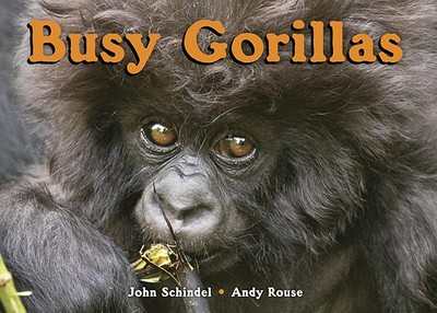 Busy Gorillas - Schindel, John, and Rouse, Andy (Photographer)
