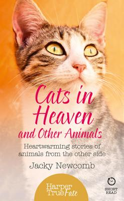 Cats in Heaven: And Other Animals. Heartwarming Stories of Animals from the Other Side. - Newcomb, Jacky