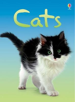 Cats - Milbourne, Anna