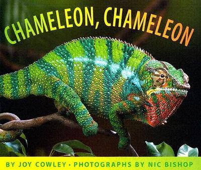 Chameleon, Chameleon - Cowley, Joy, and Bishop, Nic (Photographer)