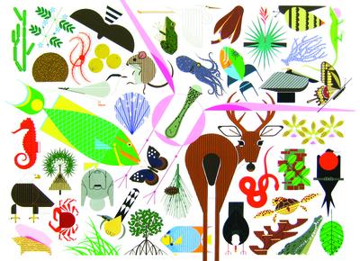 Charley Harper's Animal Kingdom: Popular Edition - Oldham, Todd (Editor)