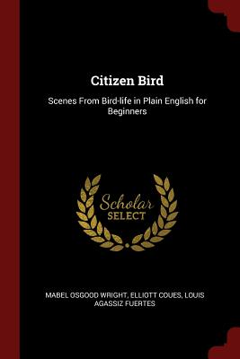 Citizen Bird: Scenes from Bird-Life in Plain English for Beginners - Wright, Mabel Osgood