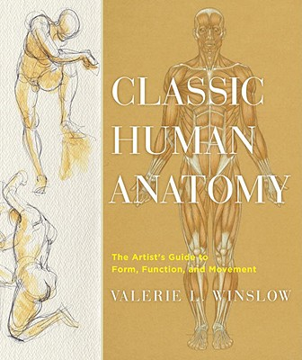 Classic Human Anatomy: The Artist's Guide to Form, Function, and Movement - Winslow, Valerie L