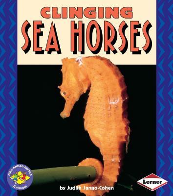 Clinging Sea Horses - Jango-Cohen, Judith