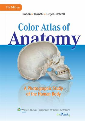 Color Atlas of Anatomy: A Photographic Study of the Human Body - Rohen, Johannes W, MD, and Lutjen-Drecoll, Elke, MD, and Yokochi, Chichiro, PhD