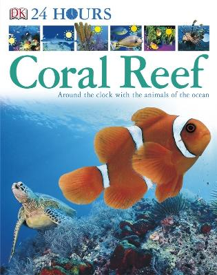 Coral Reef: Around the Clock with the Animals of the Ocean -