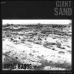 Giant Songs: The Best of Giant Sand